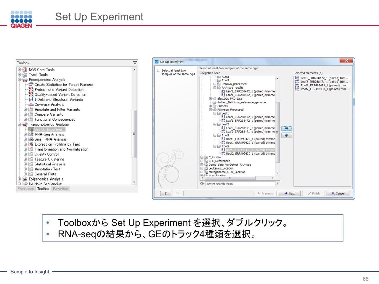 images/AJACSa2_miyamoto_068.jpg