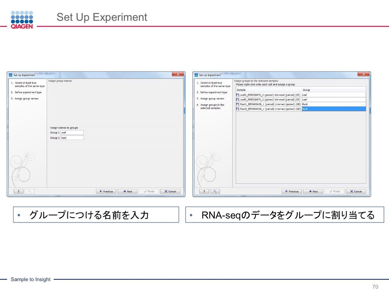 images/AJACSa2_miyamoto_070.jpg