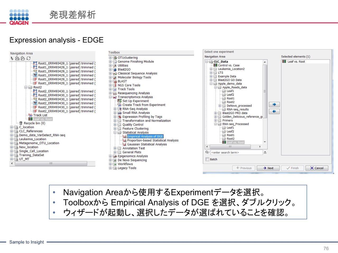 images/AJACSa2_miyamoto_076.jpg
