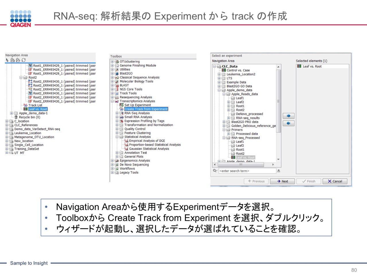 images/AJACSa2_miyamoto_080.jpg