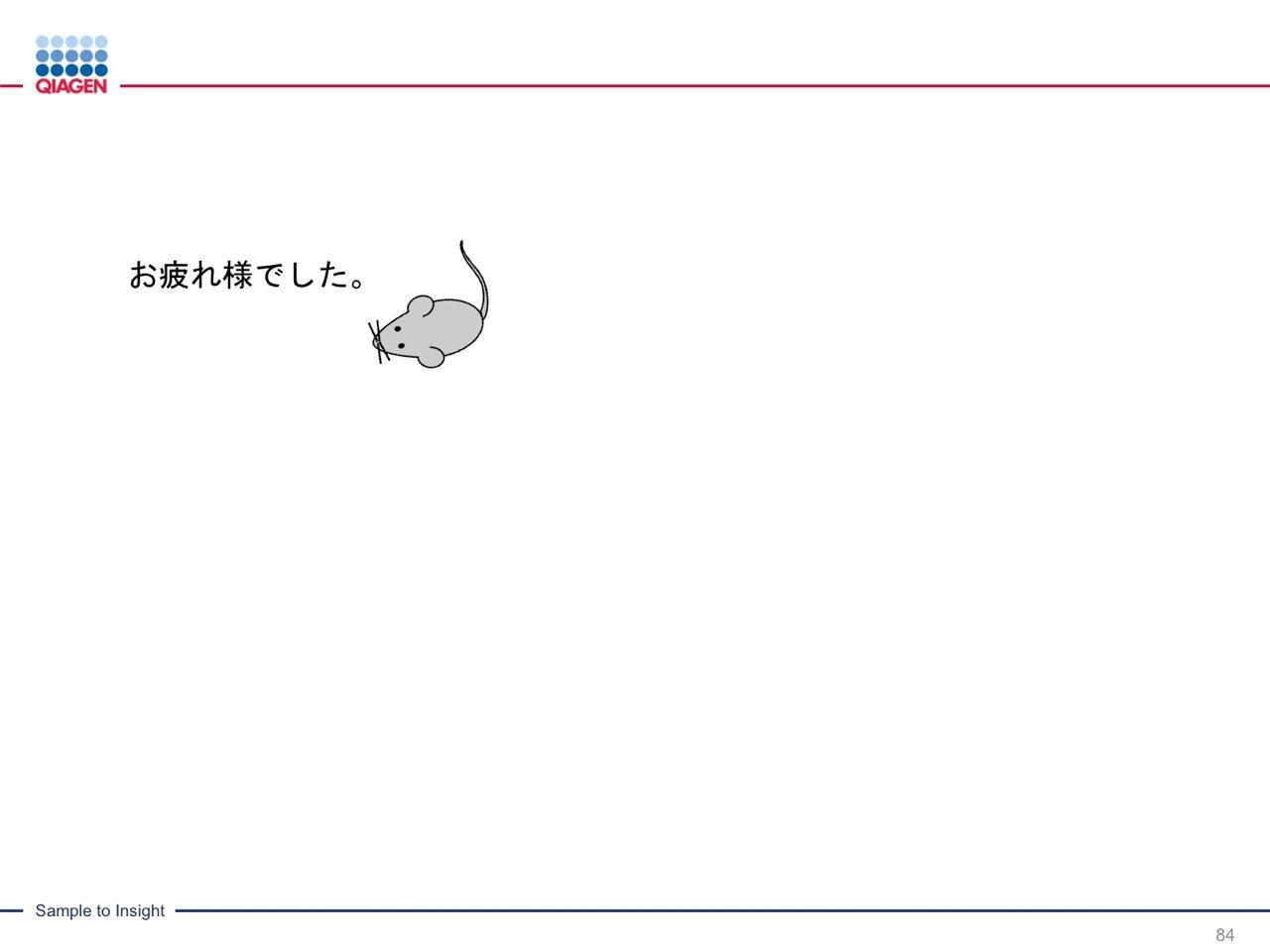 images/AJACSa2_miyamoto_084.jpg