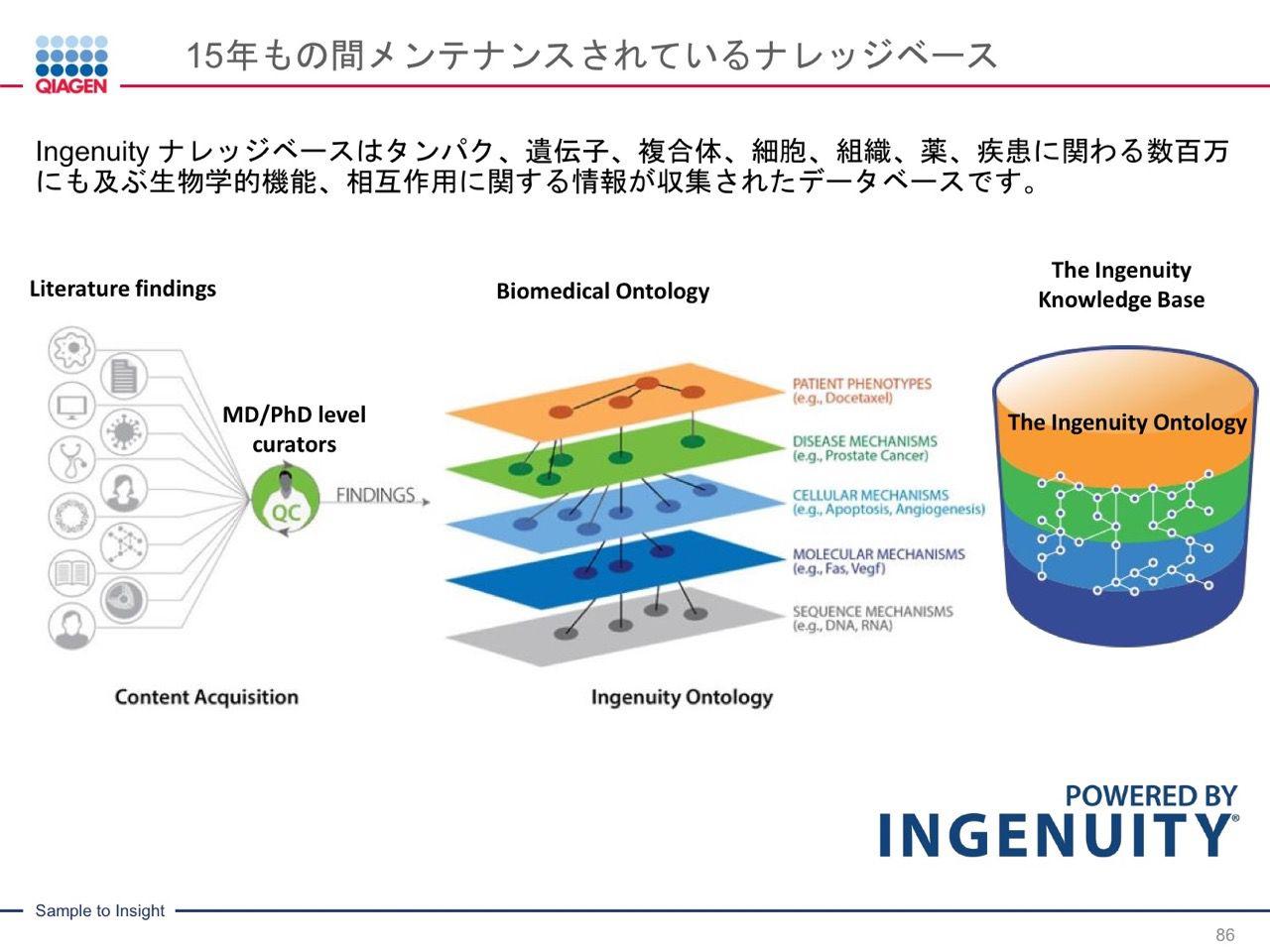 images/AJACSa2_miyamoto_086.jpg