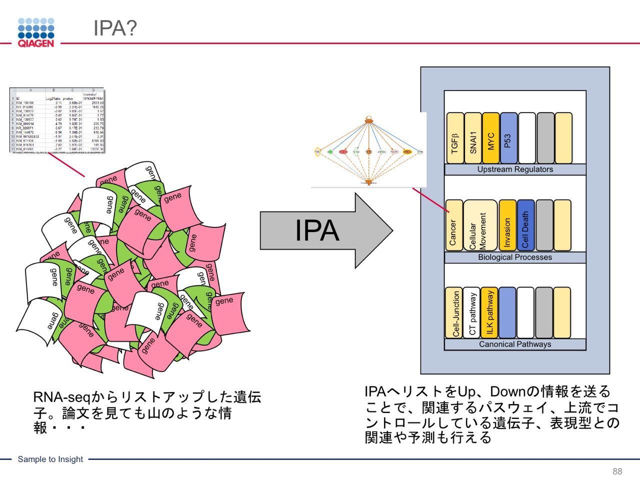 images/AJACSa2_miyamoto_088.jpg