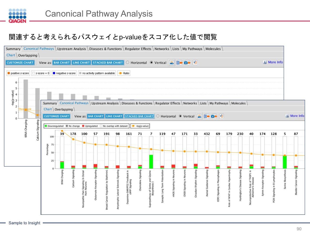 images/AJACSa2_miyamoto_090.jpg