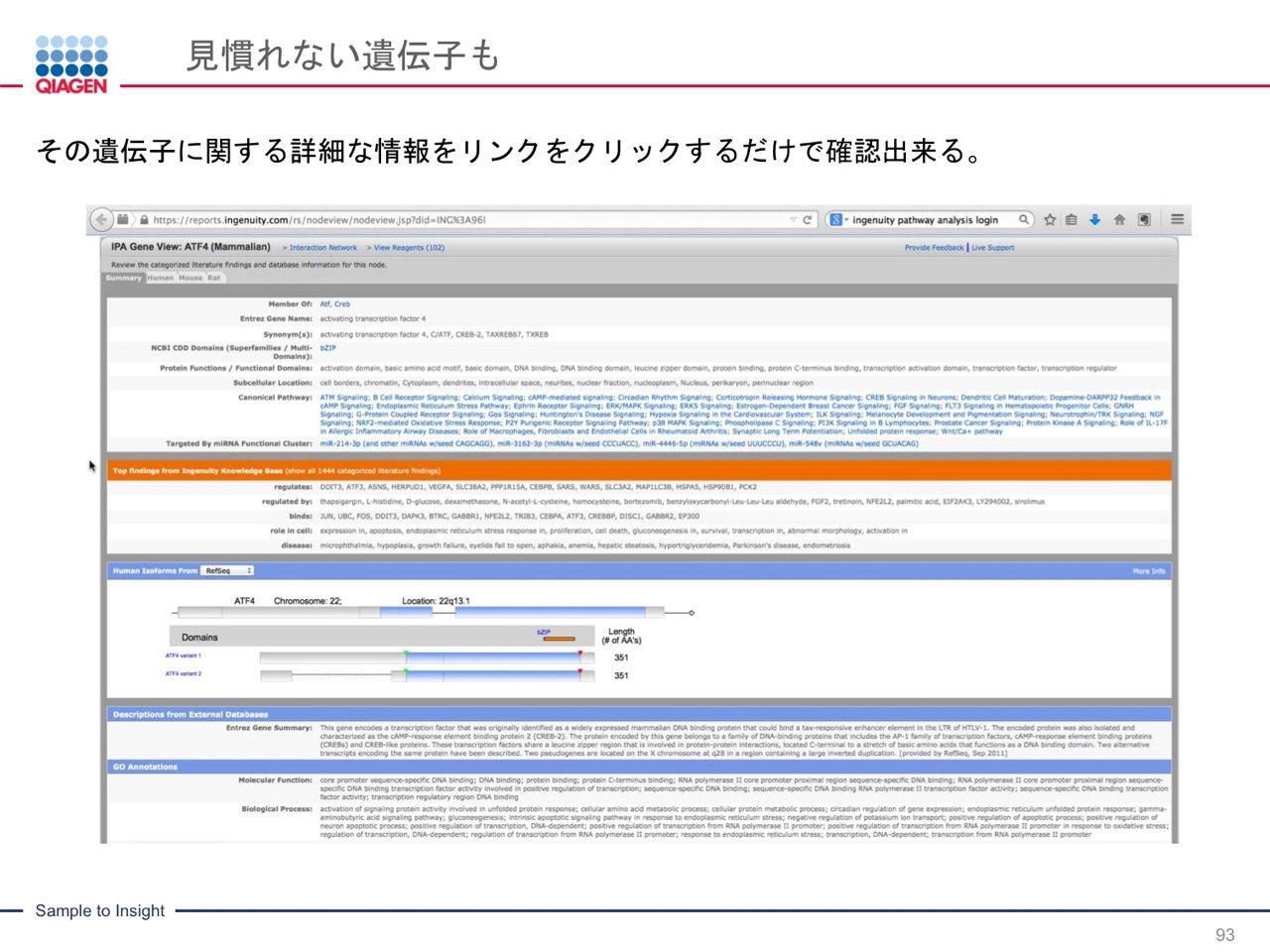 images/AJACSa2_miyamoto_093.jpg