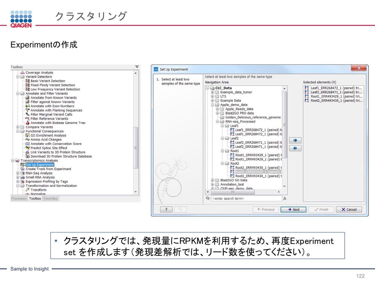 images/AJACSa2_miyamoto_122.jpg