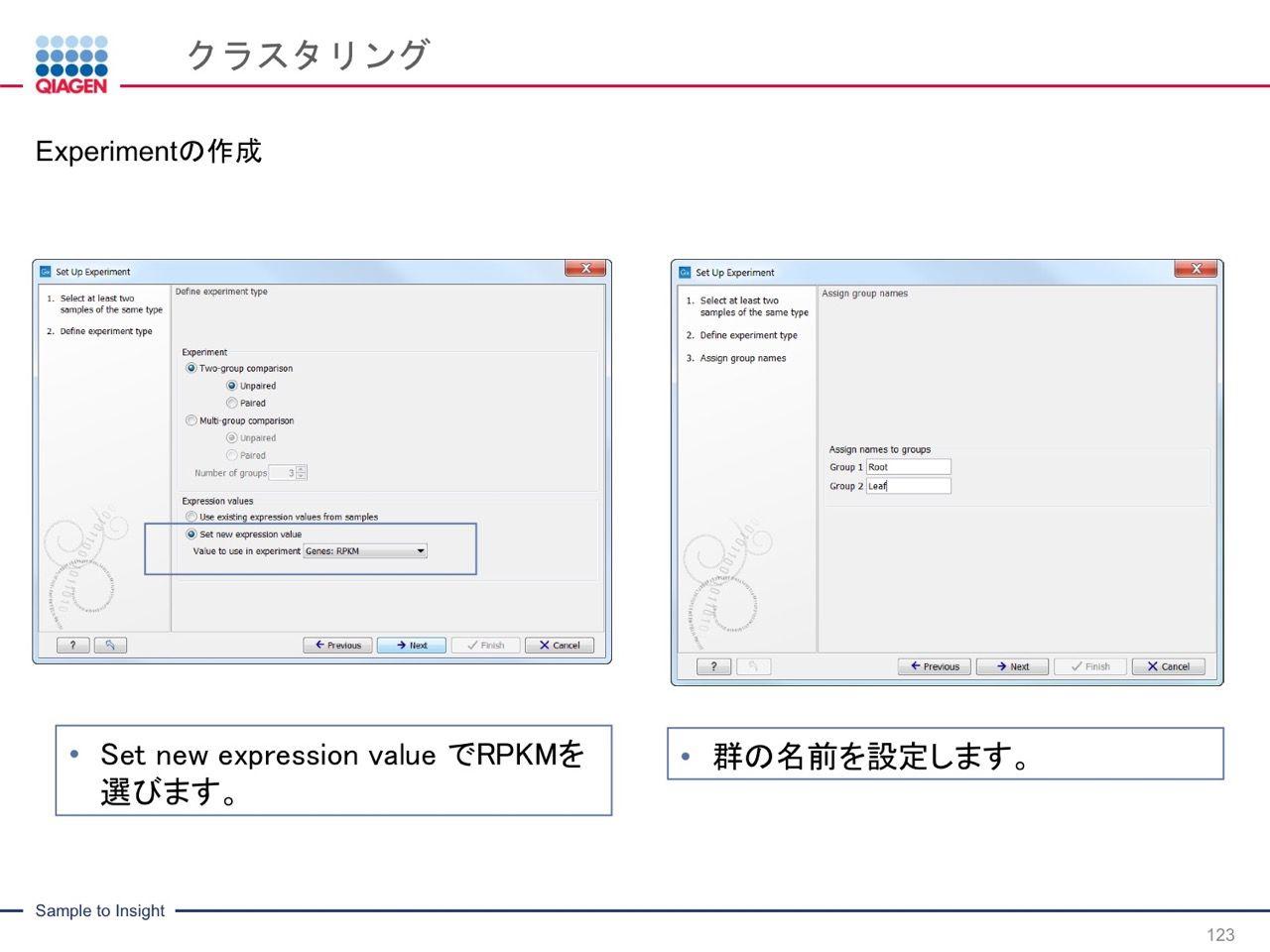images/AJACSa2_miyamoto_123.jpg