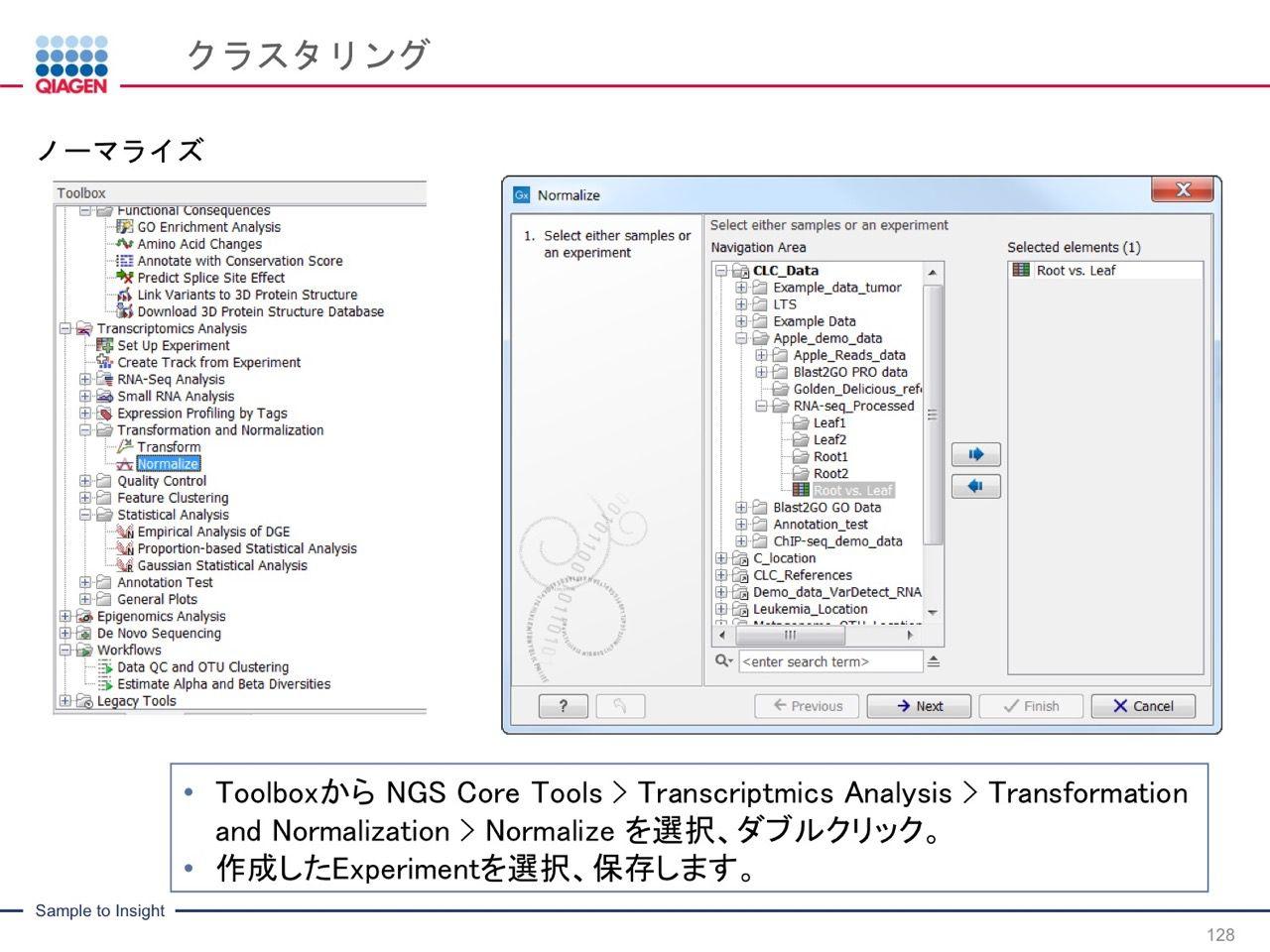 images/AJACSa2_miyamoto_128.jpg
