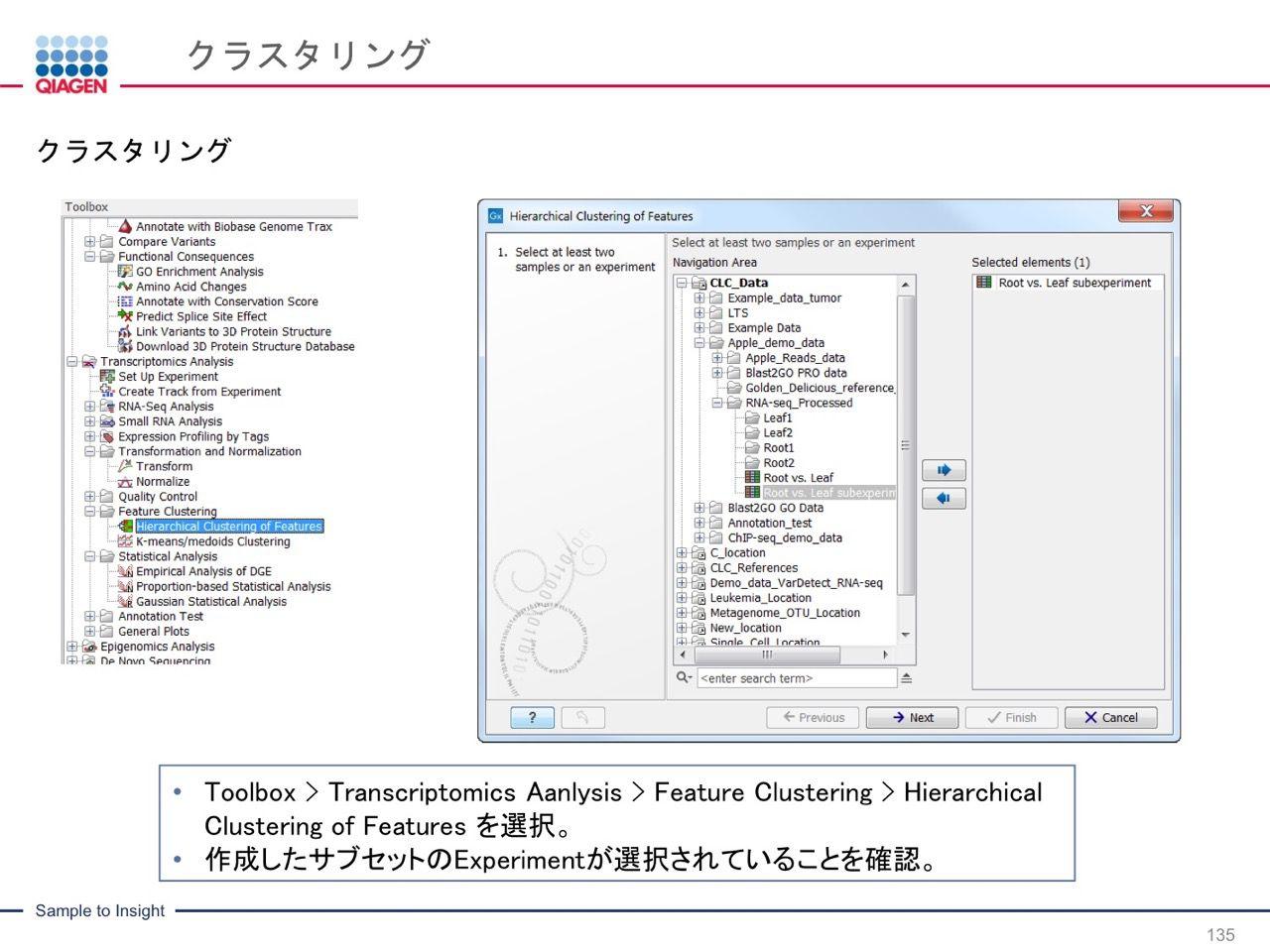 images/AJACSa2_miyamoto_135.jpg