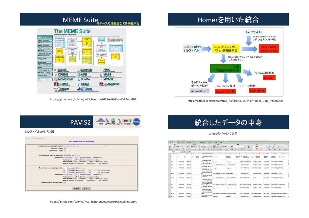images/AJACSa2_morioka_09.jpg