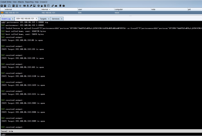 portscan_console