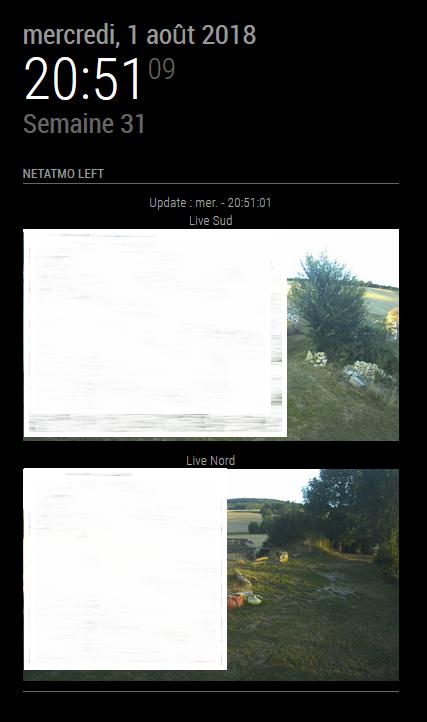 MMM-Netatmo-Presence