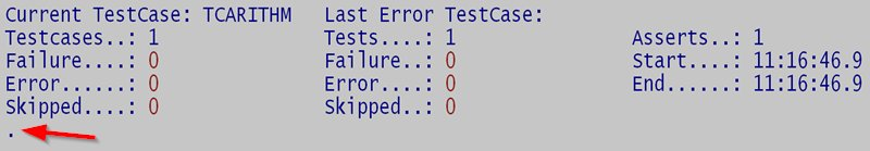 Successful result of a single TestCase in NUSINGLE