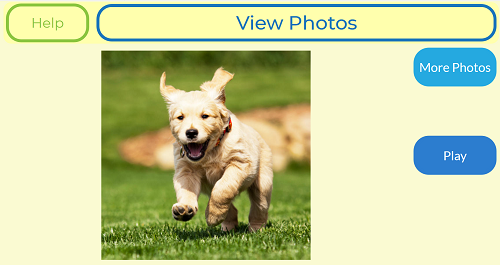 A screenshot showing buttons, text and a photo of a dog
