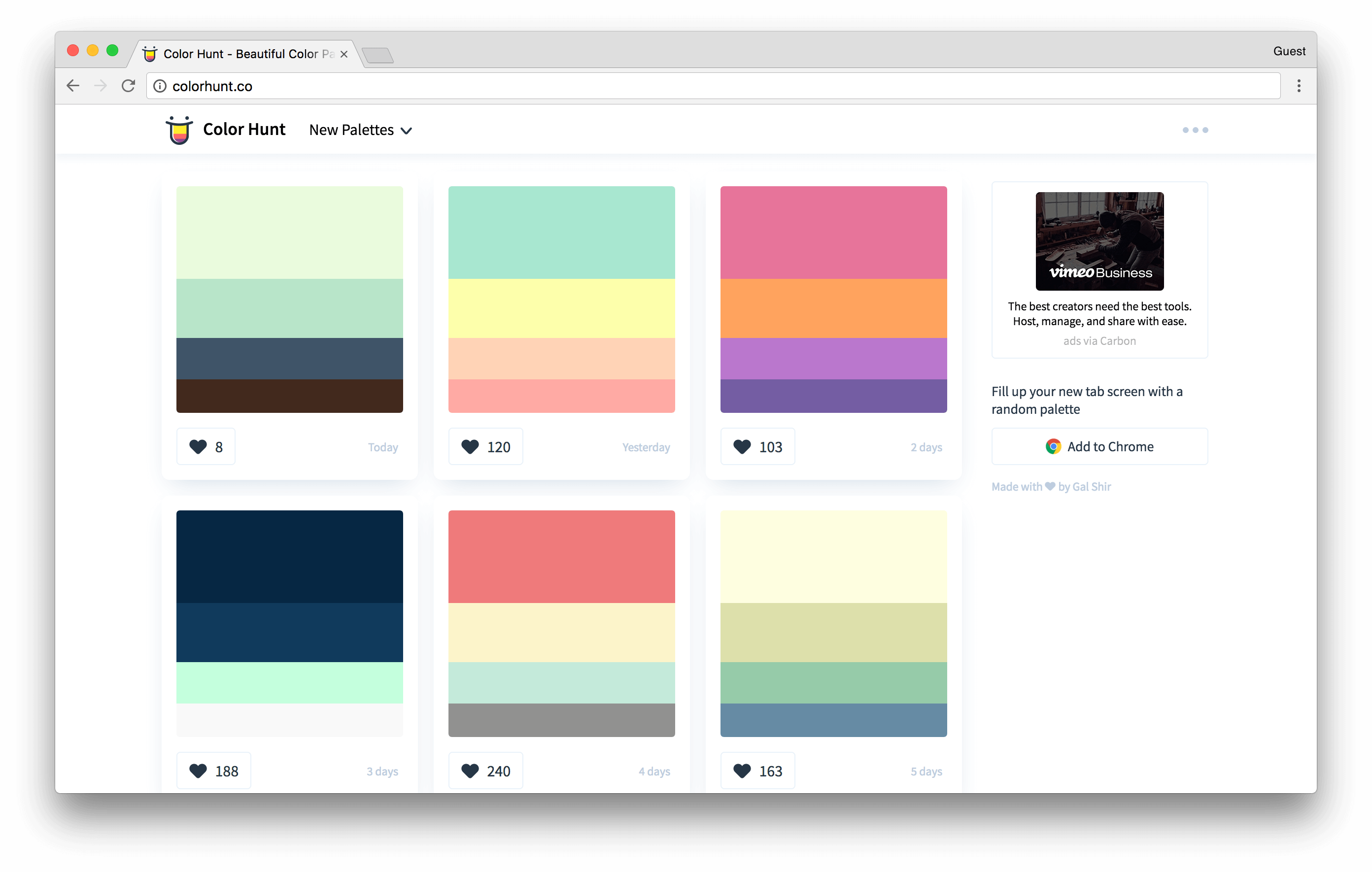 colorhunt.co