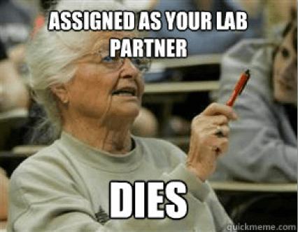 Grandma lab partner dies meme