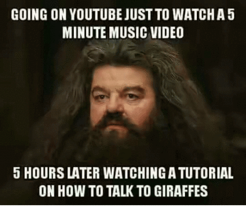 Hagrid procrastinating on Youtube meme