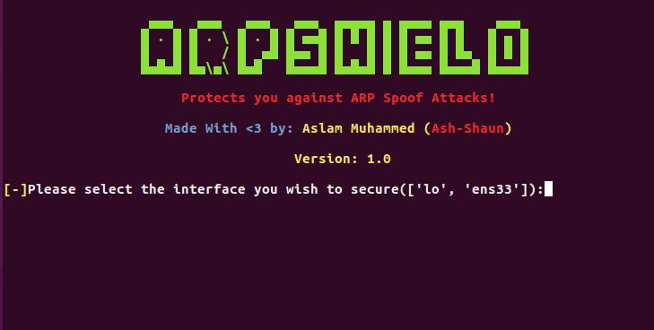 ARPShield_Screen1