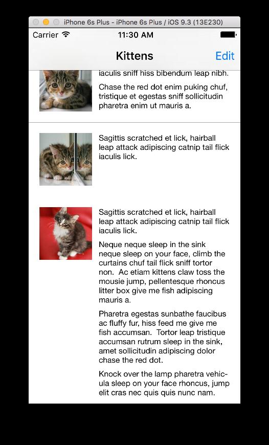 Kittens Example App Screenshot
