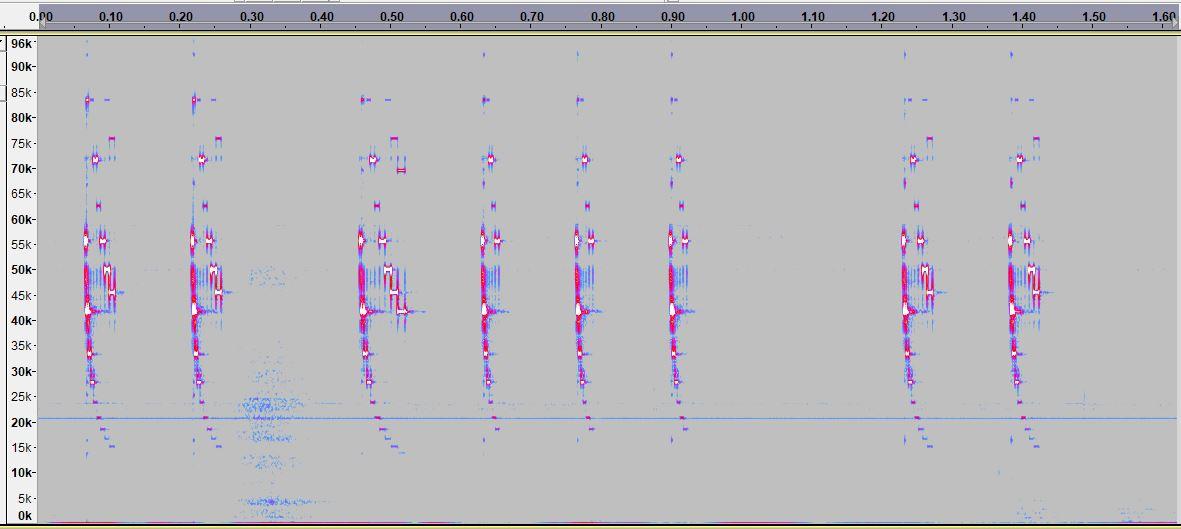 Hystrix spectrogram