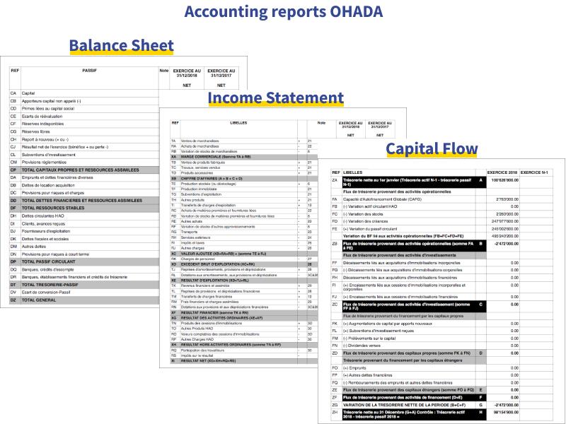 accounting reports ohada