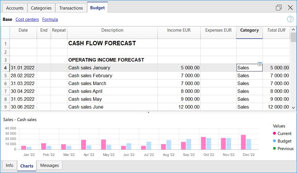 cash flow budget income