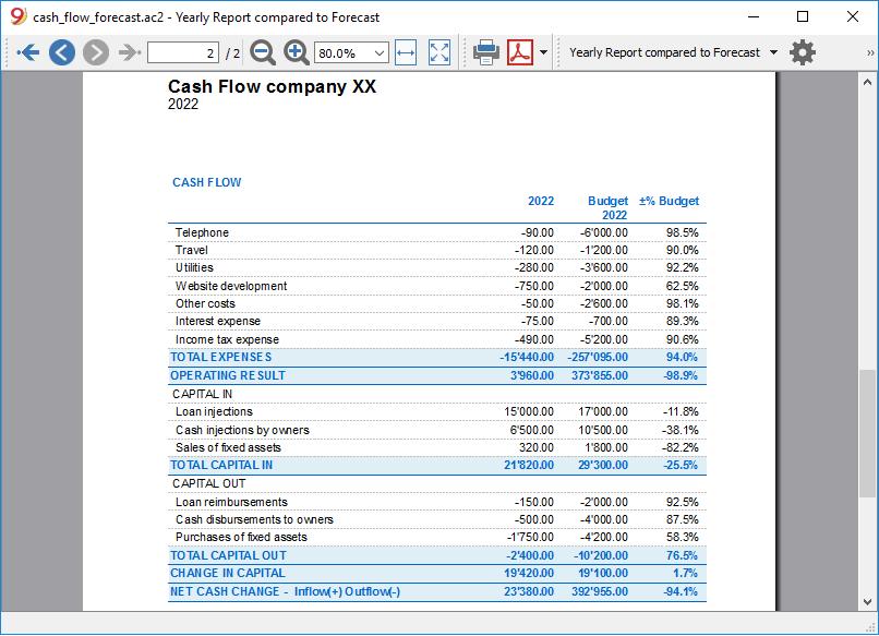 cash flow report annual comparison