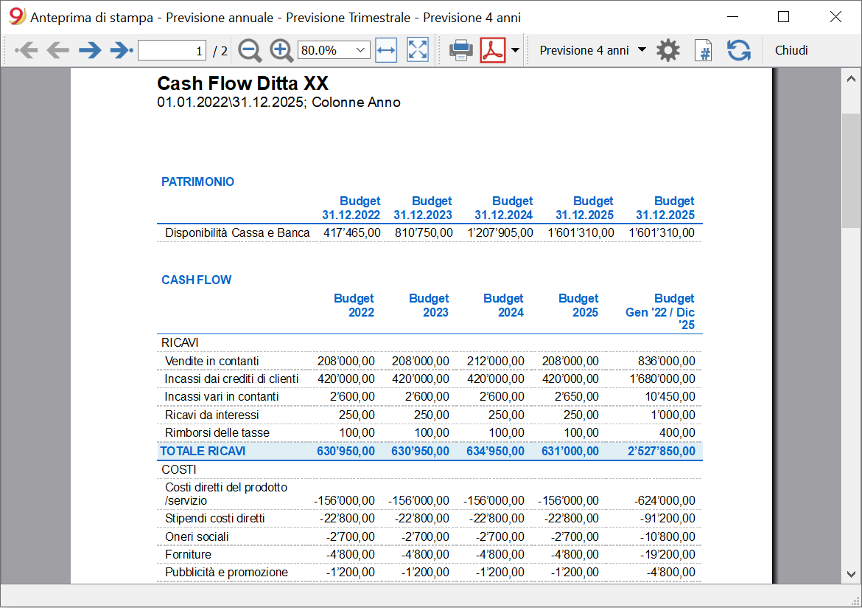 cash flow report budget 4 anni
