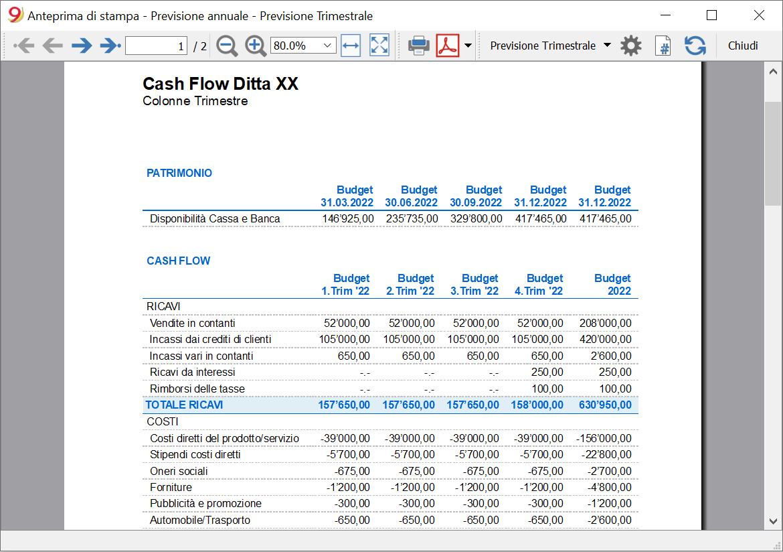 cash flow report budget trimestrale