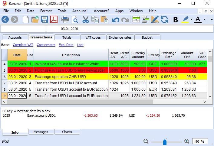 Banana Accounting for Windows full screenshot