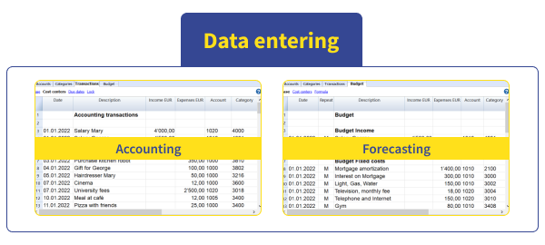 Scheme Banana Accounting data entering phase