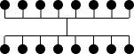 Complete Bipartite Graph Bundled