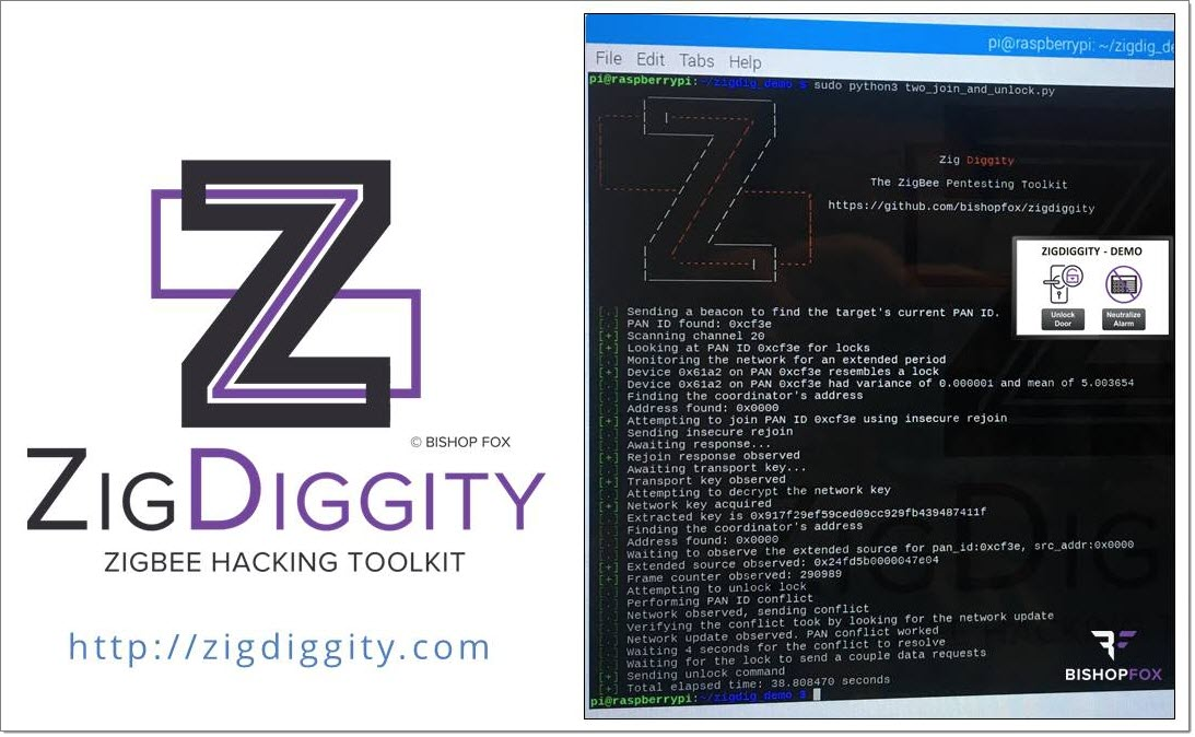 ZigDiggity - Logo