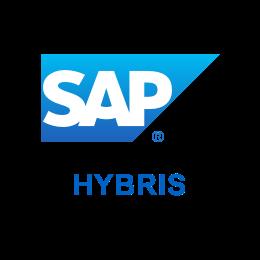 com.castsoftware.sap.hybris icon