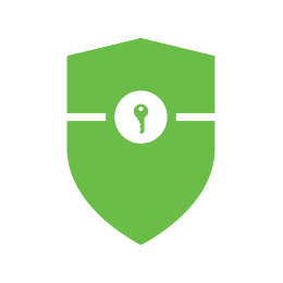 com.castsoftware.springsecurity icon