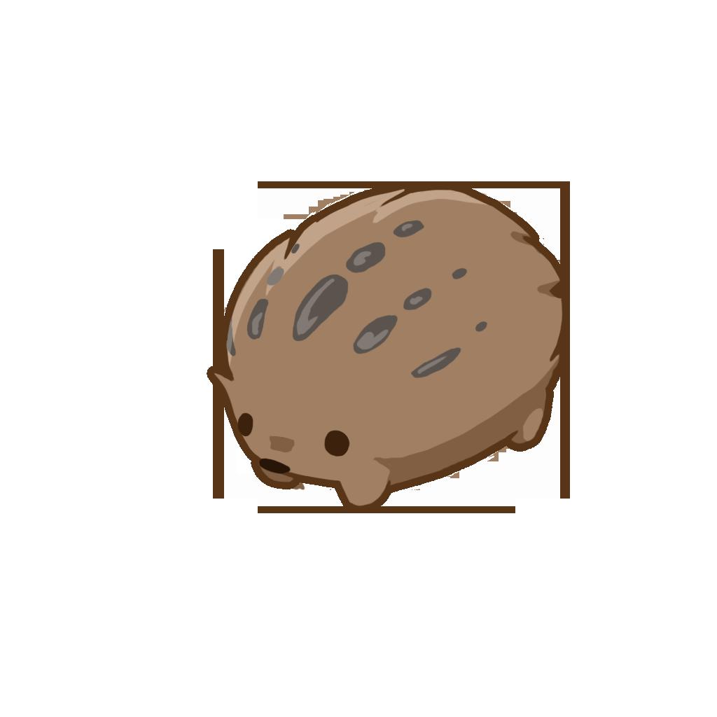 Periofaba oofarvumsus