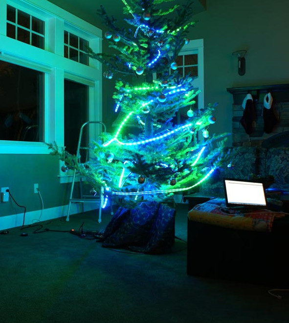 Picture of tree in use with Seahawks colors