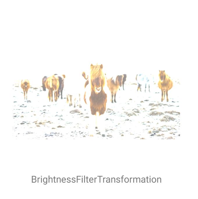 BrightnessFilterTransformation