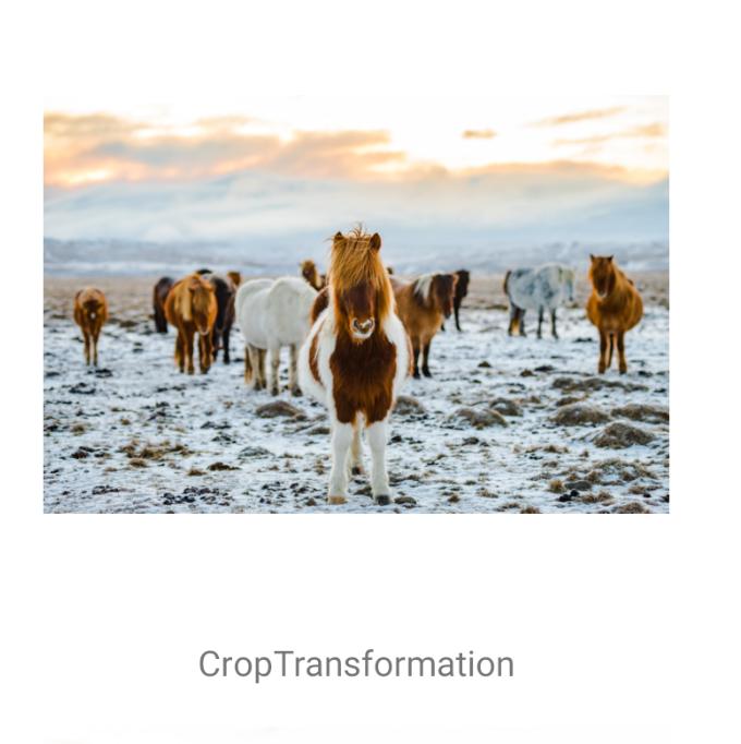 CropTransformation