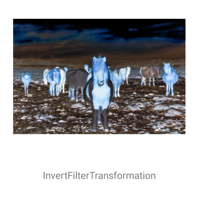 InvertFilterTransformation