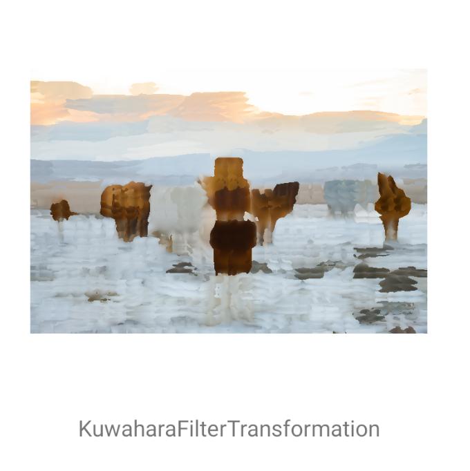 KuwaharaFilterTransformation