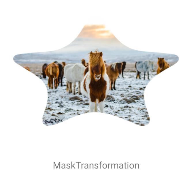 MaskTransformation