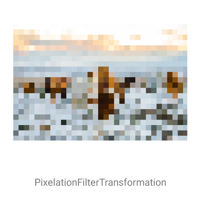 PixelationFilterTransformation