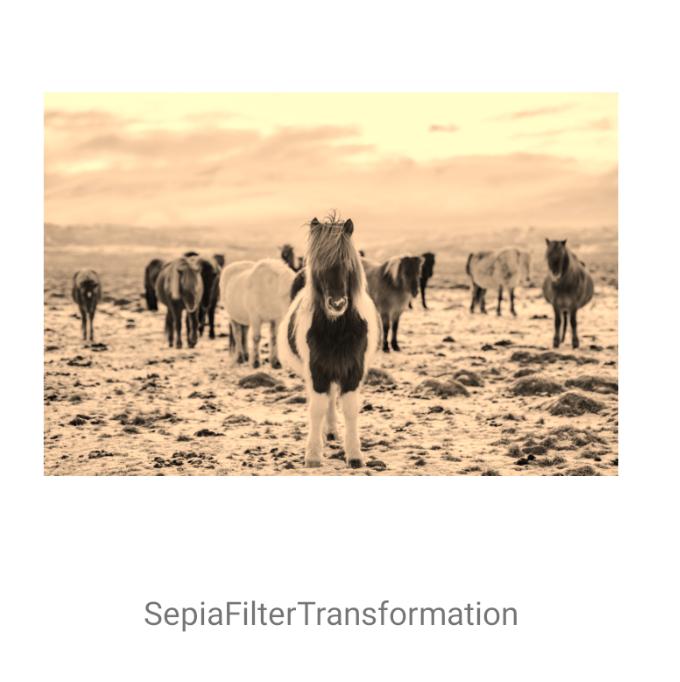 SepiaFilterTransformation
