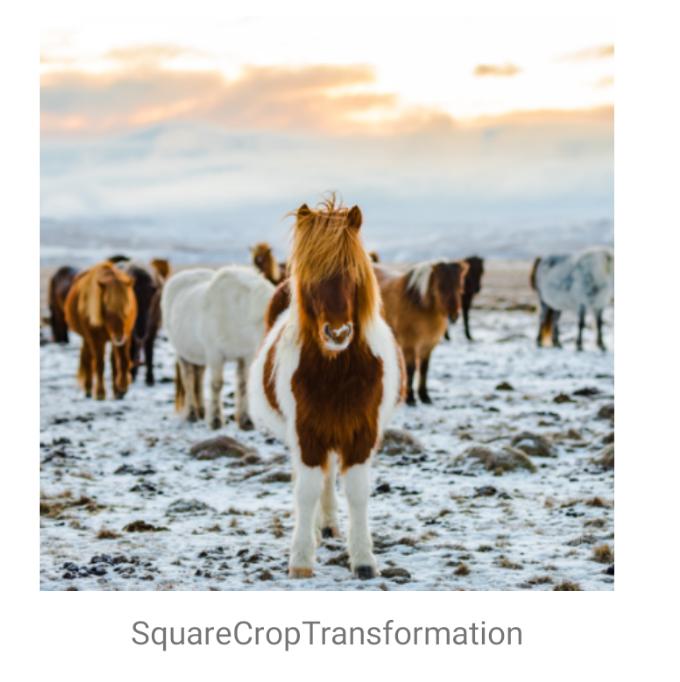 SquareCropTransformation