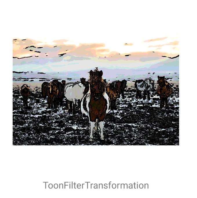 ToonFilterTransformation