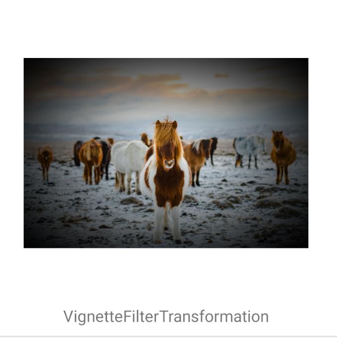VignetteFilterTransformation
