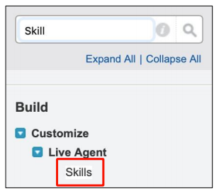 Salesforce Search Skills