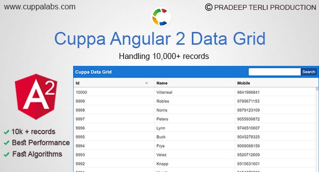 Angular 2 Data Grid | Render 10000 + records | Handle Large Datasets