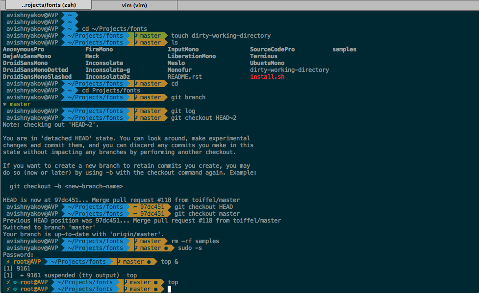 CyberLight/agnoster zsh-theme Fixed theme with special